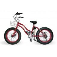 電動腳踏車 (15)